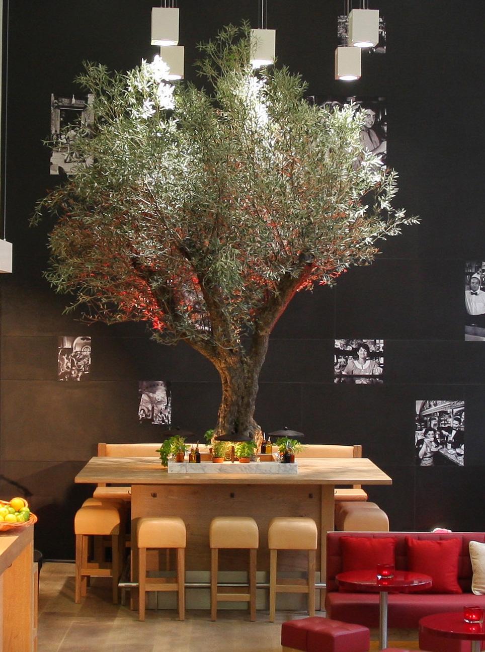 Vapiano-Olivenbaum - Das Einrichtungskonzept stammt von Stardesigner Matteo Thun