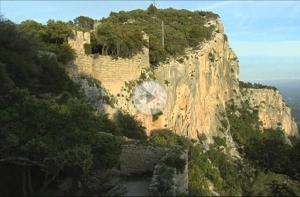 Mallorca ist nachwievor ein sehr beliebtes Reiseziel