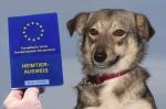 Neue Reiseregelungen für Heimtiere - Ab 2015 gibt es einen neuen Heimtierpass - Bereits ausgestellte Heimtierpässe bleiben unverändert gültig