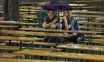 Regen Biergarten