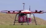 Echte Hilfe durch Drohnen: Bälle holen und Snacks bringen - das testet nun ein Goldresort in Japan (Foto: Rakuten)