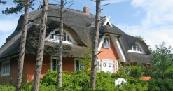 Hotel unterm Reetdach im Ostseebad Ahrenshoop: Das wollen die Gäste