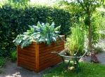 garden-883095_1920